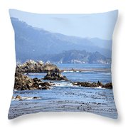 Pacific Blues Throw Pillow