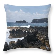 Pacific Coast On The Road To Hana Throw Pillow