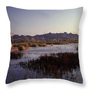 Pacific Flyway Throw Pillow