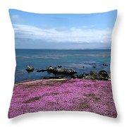 Pacific Grove California Throw Pillow