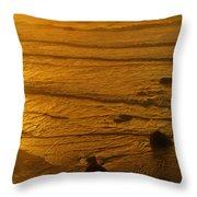 Pacific Ocean Sunset Bandon Beach Oregon Throw Pillow