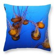 Pacific Sea Nettles Throw Pillow