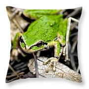 Pacific Tree Frog 2a Throw Pillow