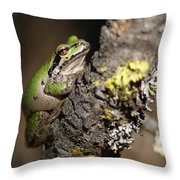 Pacific Treefrog Throw Pillow