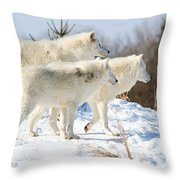 Pack Of Arctic Wolves Throw Pillow