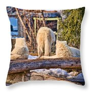 Pack Of Arctic Wolves Watching A Polar Bear Movie Throw Pillow