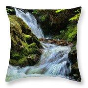 Packer Falls Vert 1 Throw Pillow