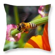 Packin Poppy Pollen Throw Pillow