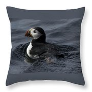 Paddling Puffin Throw Pillow