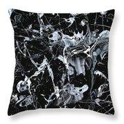 Paint #55 Throw Pillow