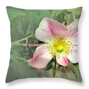 Paint Mines Wild Rose Throw Pillow