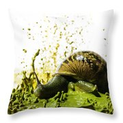 Paint Sculpture And Snail 2 Throw Pillow