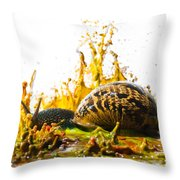 Paint Sculpture And Snail  Throw Pillow