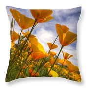 Paint The Desert With Poppies  Throw Pillow