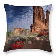 Paintbrush And The Organ Rock Throw Pillow by Tim Fitzharris