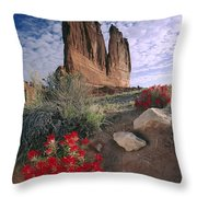 Paintbrush And  Organ Rock Throw Pillow