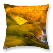 Paintbrush Creek Throw Pillow