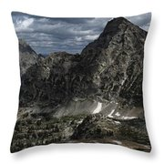 Paintbrush Divide Throw Pillow