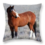 Painted Apache Throw Pillow