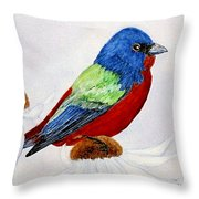 Painted Bunted Throw Pillow