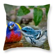 Painted Bunting & Cerulean Warbler Throw Pillow