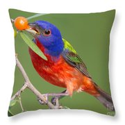 Painted Bunting Eating Granjeno Berry Throw Pillow