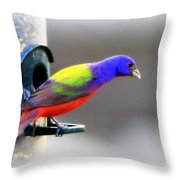 Painted Bunting - Img 9755-004 Throw Pillow