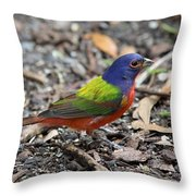 Painted Bunting Throw Pillow