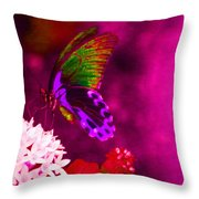 Painted Buterfly Throw Pillow