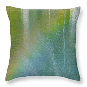 Painted By Water And Light Throw Pillow