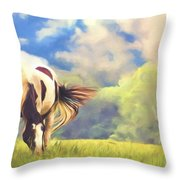 Painted Colours Throw Pillow