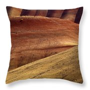 Painted Curves Throw Pillow