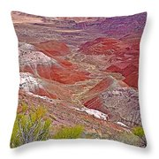 Painted Desert From Rim Trail In Petrified Forest National Park-arizona Throw Pillow