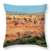 Painted Desert Throw Pillow