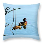 Painted Ducks Throw Pillow