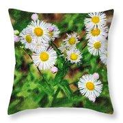 Painted Fleabane Throw Pillow