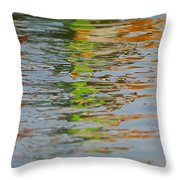 Painted Flow 11 Throw Pillow