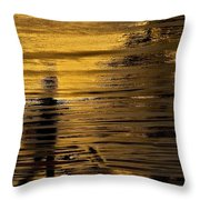Painted Flow 19 Throw Pillow