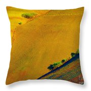 Painted Hills 5 Throw Pillow