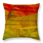 Painted Hills 9 Throw Pillow