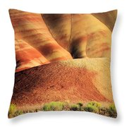 Painted Hills And Grassland Throw Pillow