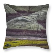 Painted Hills Bloom Throw Pillow