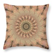 Painted Kaleidoscope 1 Throw Pillow