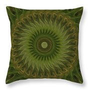 Painted Kaleidoscope 10 Throw Pillow