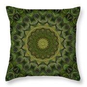 Painted Kaleidoscope 11 Throw Pillow