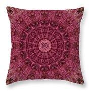 Painted Kaleidoscope 12 Throw Pillow