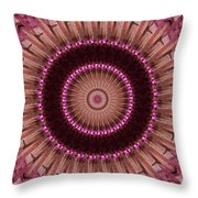 Painted Kaleidoscope 14 Throw Pillow