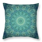 Painted Kaleidoscope 5 Throw Pillow