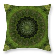 Painted Kaleidoscope 8 Throw Pillow