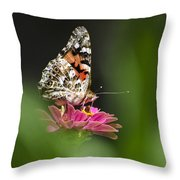 Painted Lady Butterfly At Rest Throw Pillow by Christina Rollo
